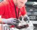 Rendez-vous et paiement en ligne : l'entretien d'une Audi n'a jamais été aussi simple